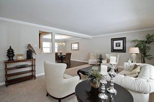 Living room interior decorating